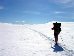Illustrasjon som visar skigåar på fjelltur.